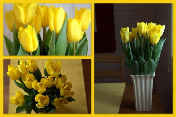 Keltaiset tulppaanit kollaasi (Custom)